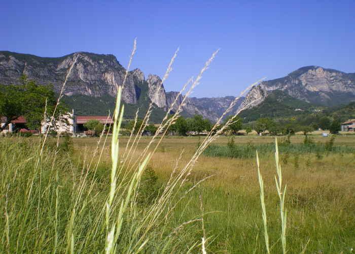 In Saoû, dem Eingang zur hochgelegenen Synkline.