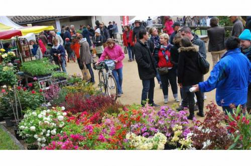 Bloemenmarkt in Mirabel et Blacons