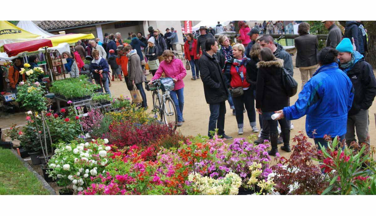 Blumenmarkt in Mirabel et Blacons